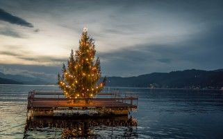 عکس درخت کریسمس