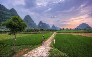 مزرعه در گیولین چین