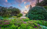 عکس باغ بهاری بوتانیک رویال