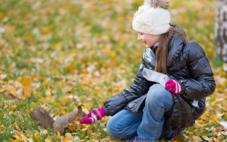 عکس غذا دادن به سنجاب جنگل پاییزی