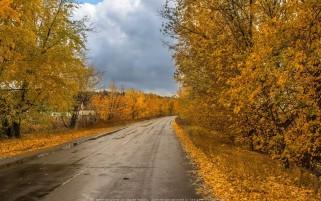 عکس جاده پاییزی