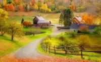 منظره پاییز جاده