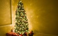 درخت زیبای کریسمس و هدایا