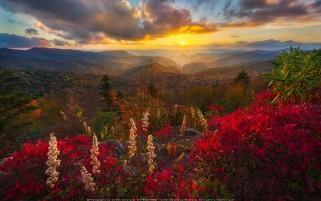 غروب زیبای آفتاب کوه های کالیفرنیا شمالی