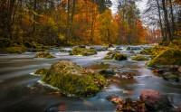 رنگ های پاییزی، فنلاند