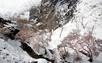 عکس زمستان درکه تهران