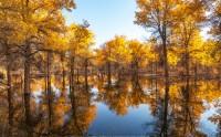 عکس انعکاس پاییز در دریاچه