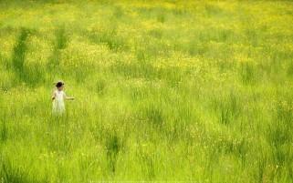 عکس دختری در دشت گل