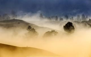 عکس زیبا و دل انگیز از یک صبح مه آلود