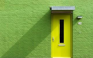 عکس زیبا از دیوار سبز