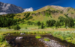 Pocaterra Creek