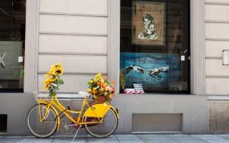 عکس دوچرخه پر از گل بهاری