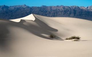 عکس بیابان شن های سفید، کالیفرنیا