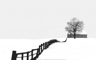 عکس مزرعه زمستانی