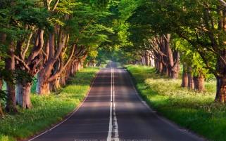 عکس زیبا جاده بلندفورد