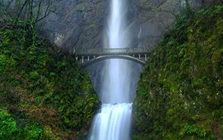 آبشار ملتنماه،ارگان
