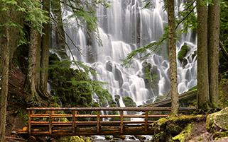 آبشار رامنا،ارگان