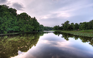 رودخانه لاکپشت
