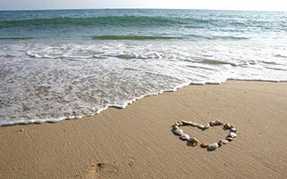 قلب ساحلی