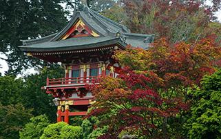 معبد ژاپنی،کالفرنیا