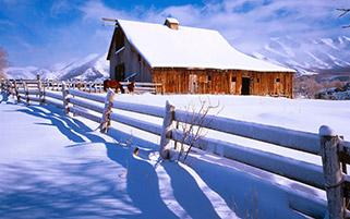 صبح بعد از برش برف