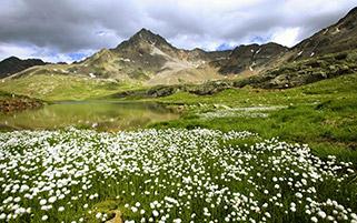 طبیعت استلویو،ایتالیا