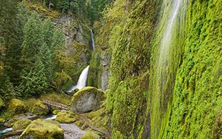 ادامه آبشار الواه،ارگان