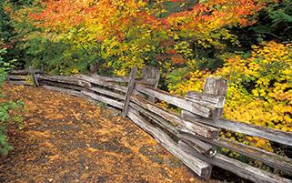 آغاز پاییز،پارک ملی کوه راینر