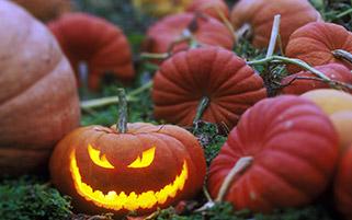کدوی بدجنس،جشن هالووین