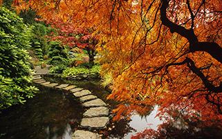 باغ بوچارت،جزیره ونکوور،بریتیش کلمبیا