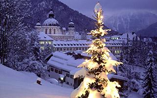 درخت کریسمس،باواریا،آلمان