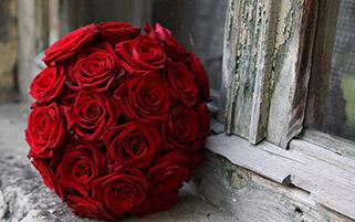 رزهای سرخ
