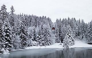 دامنه کوه های سویس