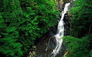 آبشار بلوط سفید،ویرجینیا