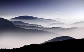 جنگا های پوشیده از مه