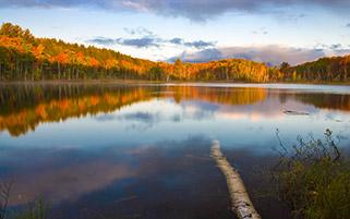 دریاچه کنسیل، میشیگان