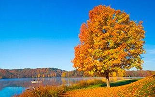 آرامش پاییز
