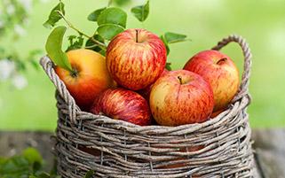 سبد سیب های قرمز