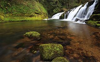 آبشار فورک، ارگان