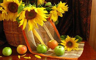 گل های آفتاب گردان و سیب ها
