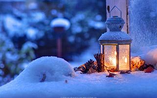 سرد اما سال نو گرم