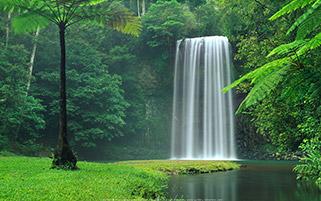 آبشار میلا میلا، استرالیا